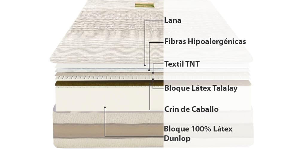 Corte del producto Colchón de Látex Natural Dorwin Natur Talalay Articulado
